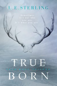 Cover Reveal: True Storm  By: L.E. Sterling