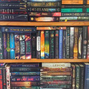 Christine's Bookshelf
